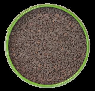 schwarze Sesamsaat