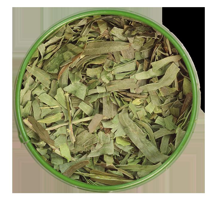 Estragonblätter